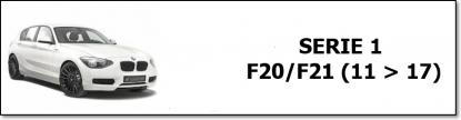 F 20/21